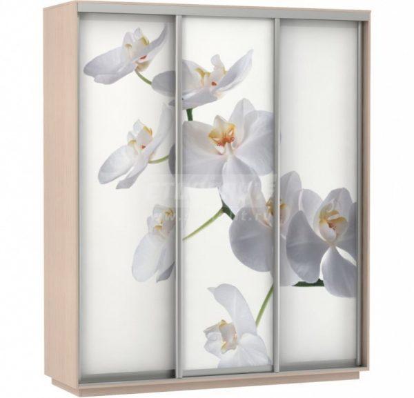 Шкаф-купе от производителя E-1 Экспресс Фото 3 Цвет белы с рисунком Белая орхидея